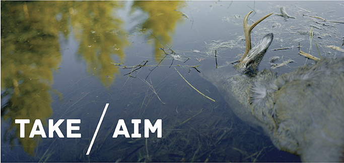 Take-Aim Project.jpg