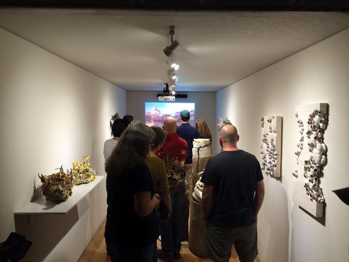 Visitors-fascinated-with-the-Collapse-exhibition-11-6-15.JPG