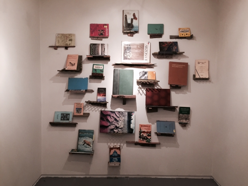 Cumulation-Culmination, 2015  25 books, Shelves made from trash collected from Rio Salado area, Variable dimensions