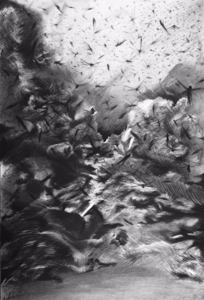 Sin título (Untitled) 7 , 2015 Charcoal, conte crayon drawing on paper 40 x 27 inches