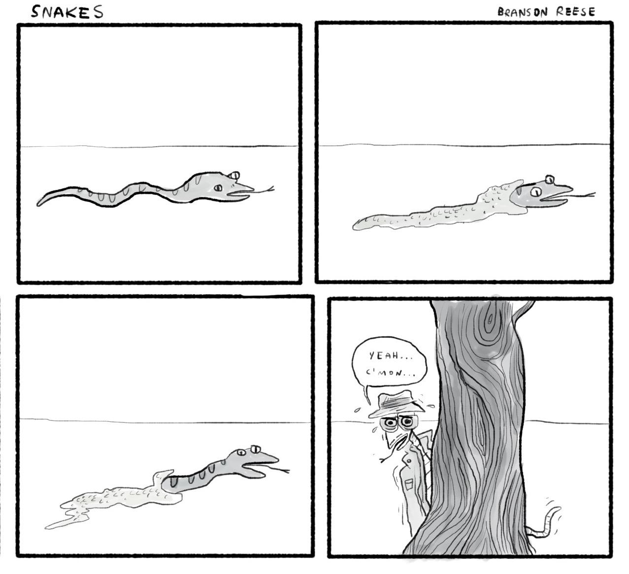0024 snakes3.jpg