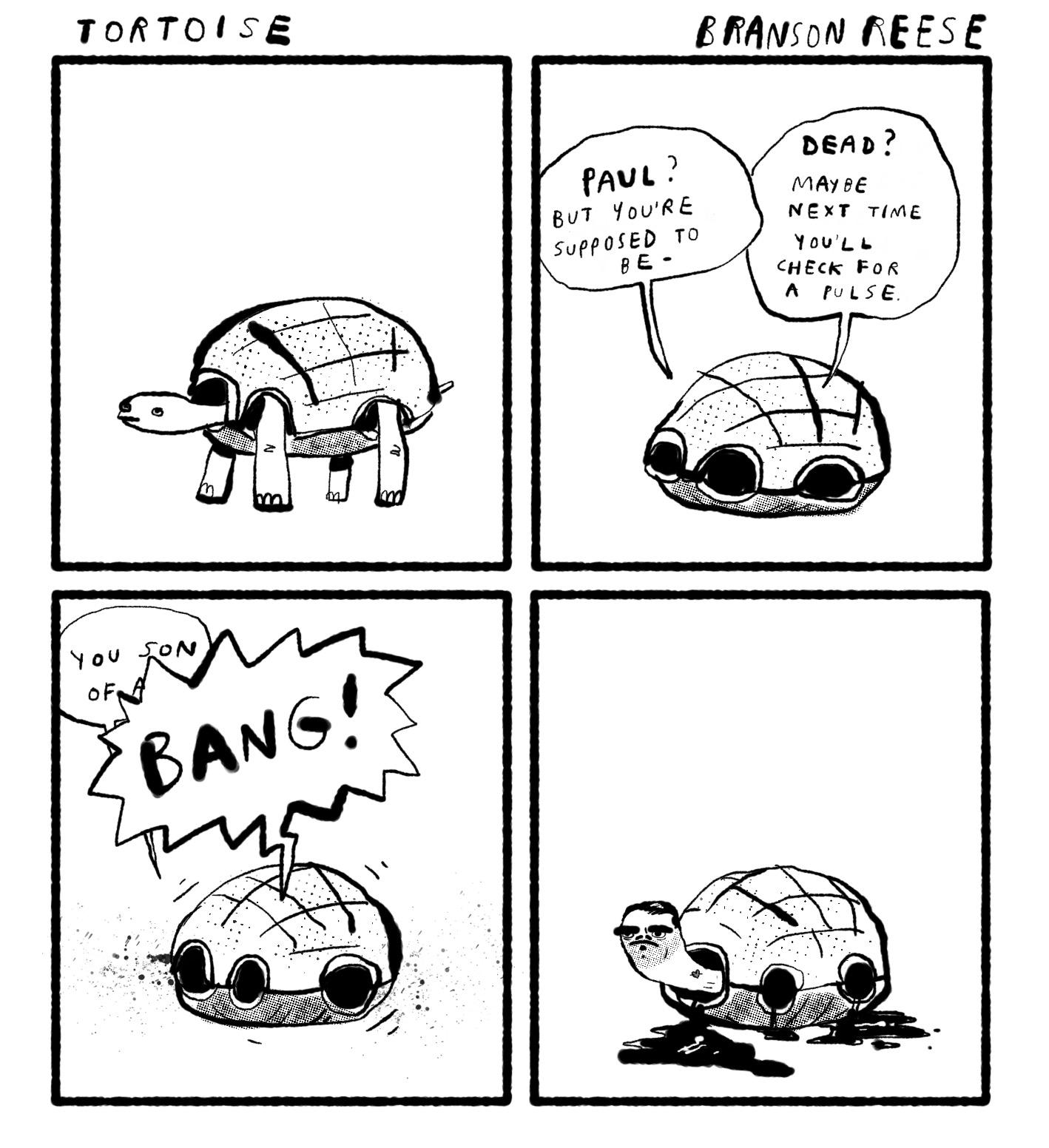 0361 tortoise1.jpg