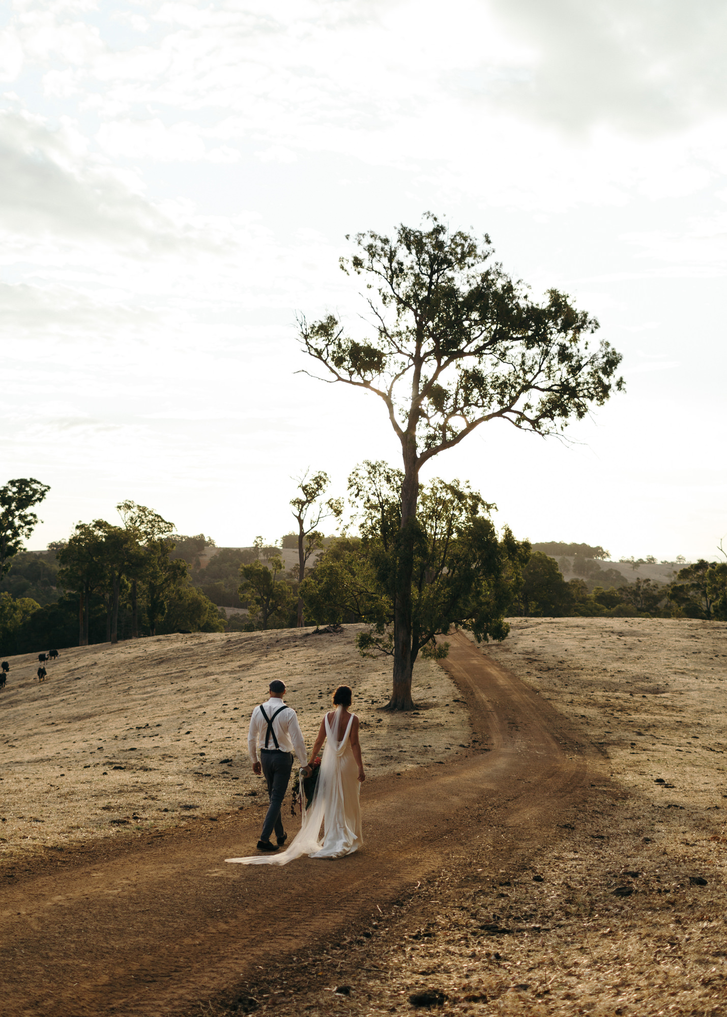 CLARK-WEDDING-EDITH-VALLEY-CARTER-ROSE-PHOTOGRAPHY-462.JPG