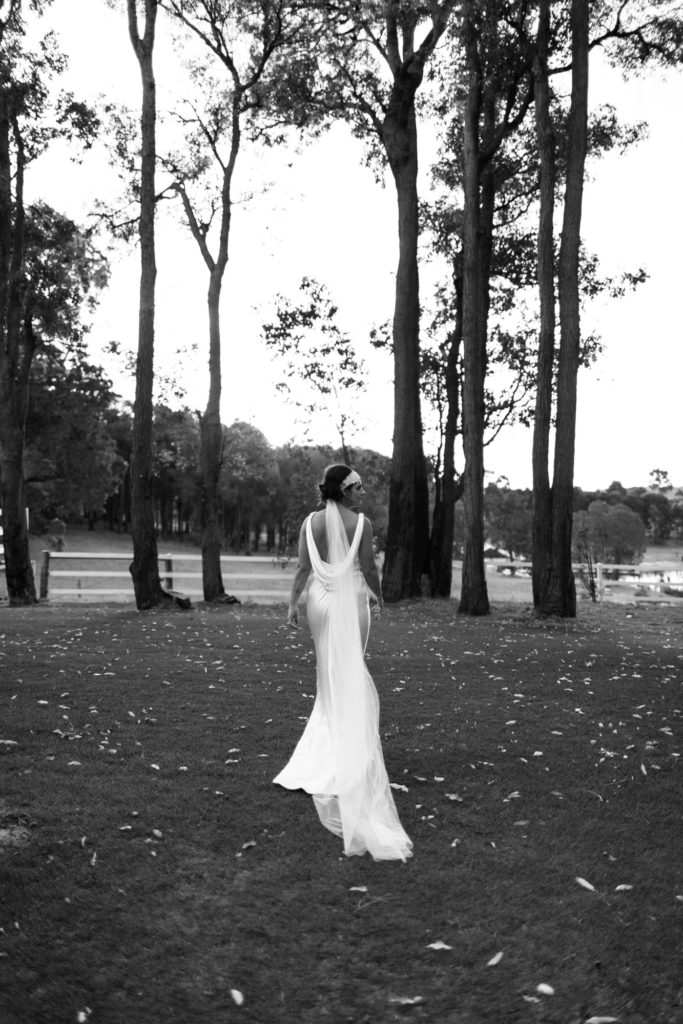 CLARK-WEDDING-EDITH-VALLEY-CARTER-ROSE-PHOTOGRAPHY-521.JPG