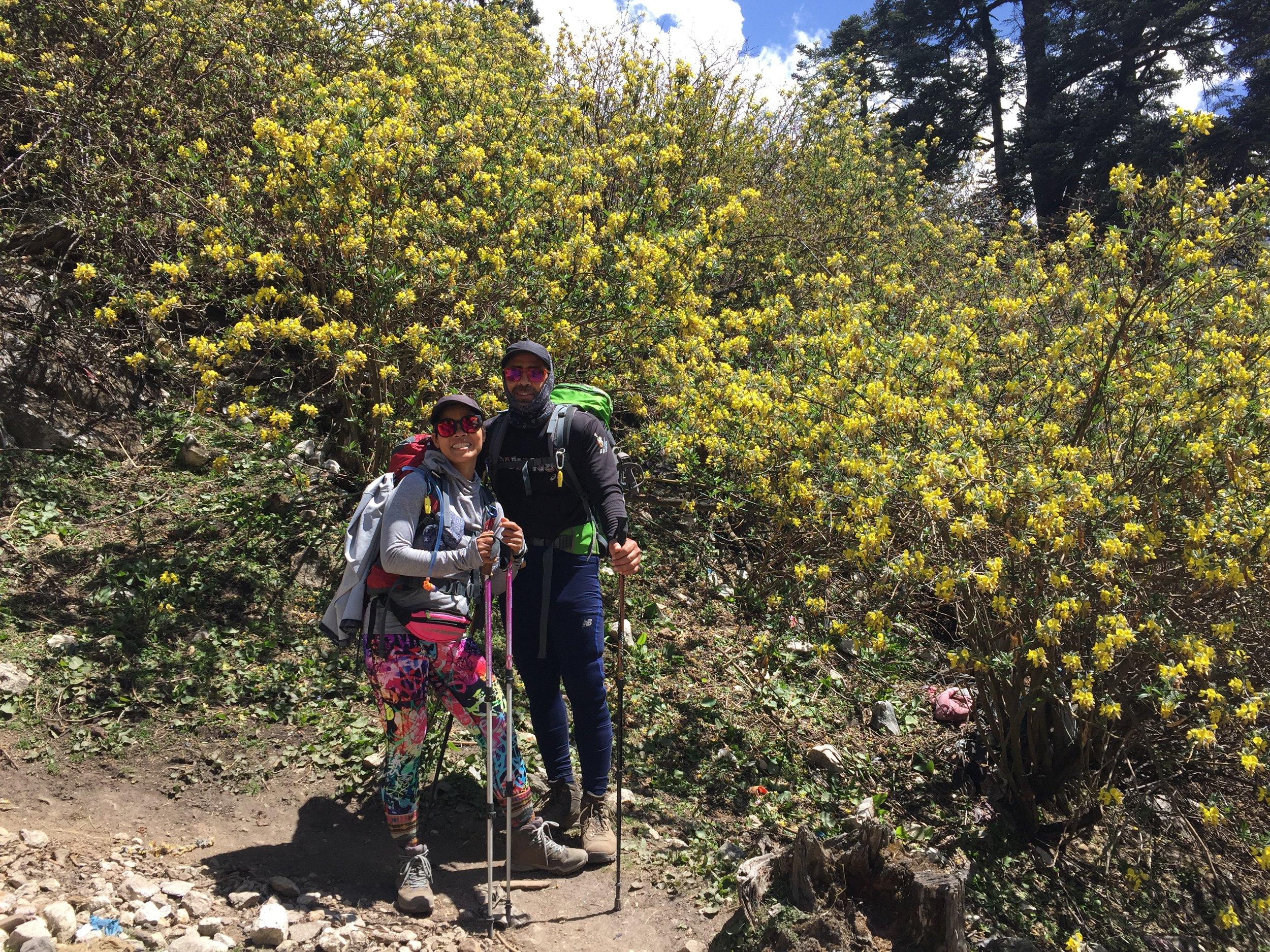Những bông hoa rực rỡ ở khu bảo tồn Manaslu