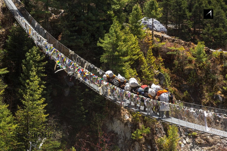 Một đoàn la thồ hàng qua cầu treo ở công viên quốc gia Sagarmatha