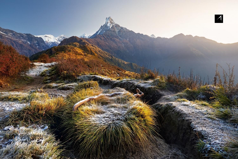 Đường đến Trại Cơ sở Mardi Himal với đỉnh Machhapuchare ấn tượng ngay phía trước