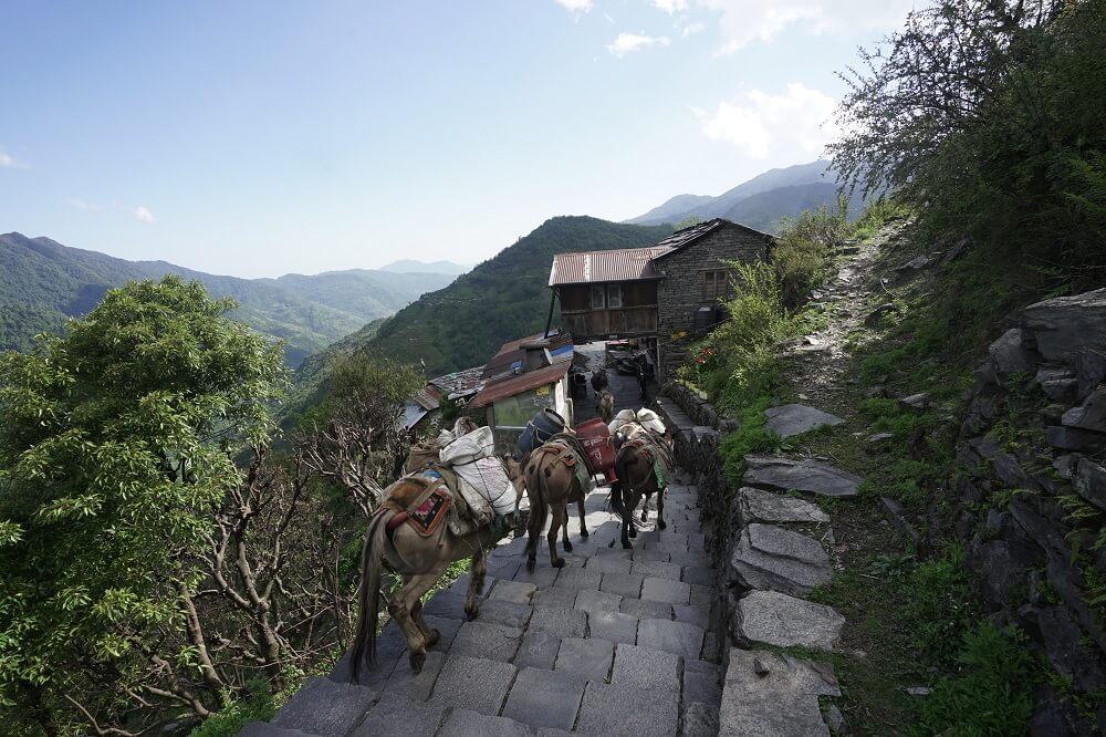 Một con đường lát đá được bảo quản tốt ở Annapurna Base Camp Trek