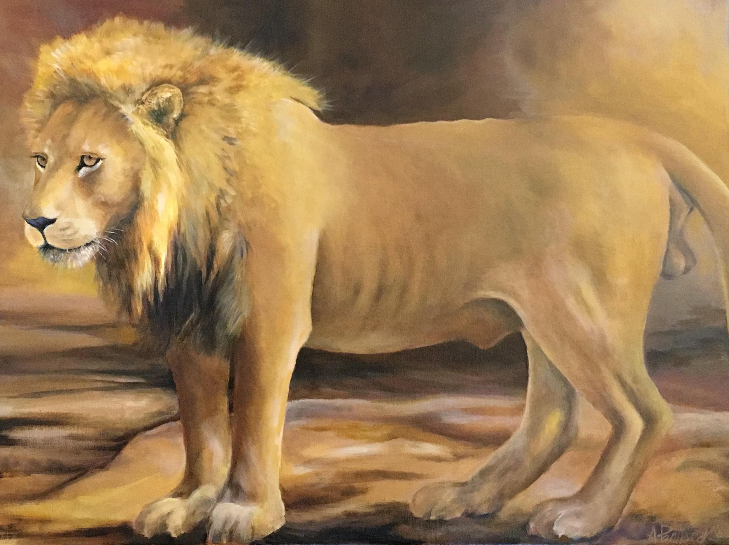 Lion (study)