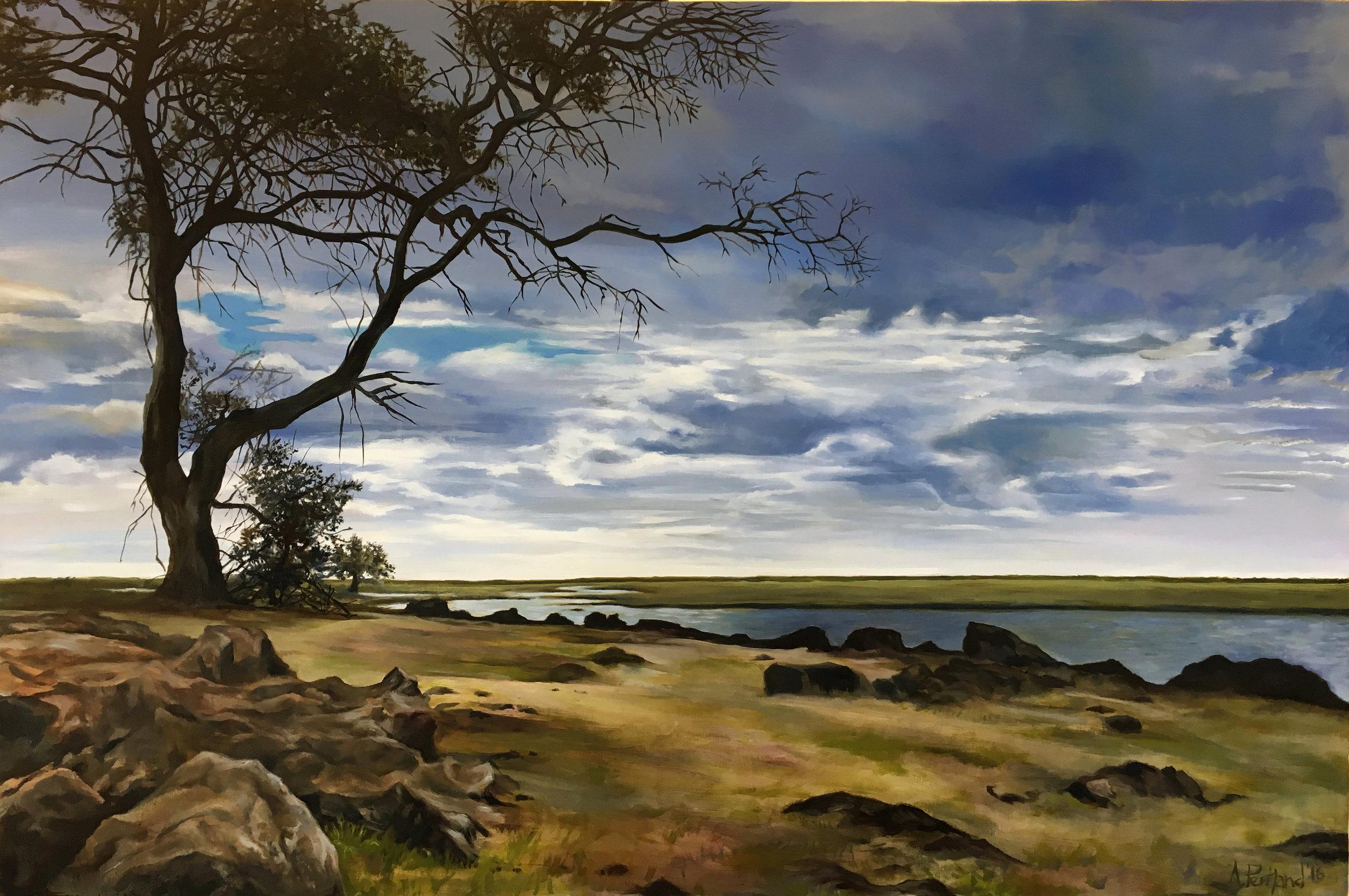 Chobe River Basin