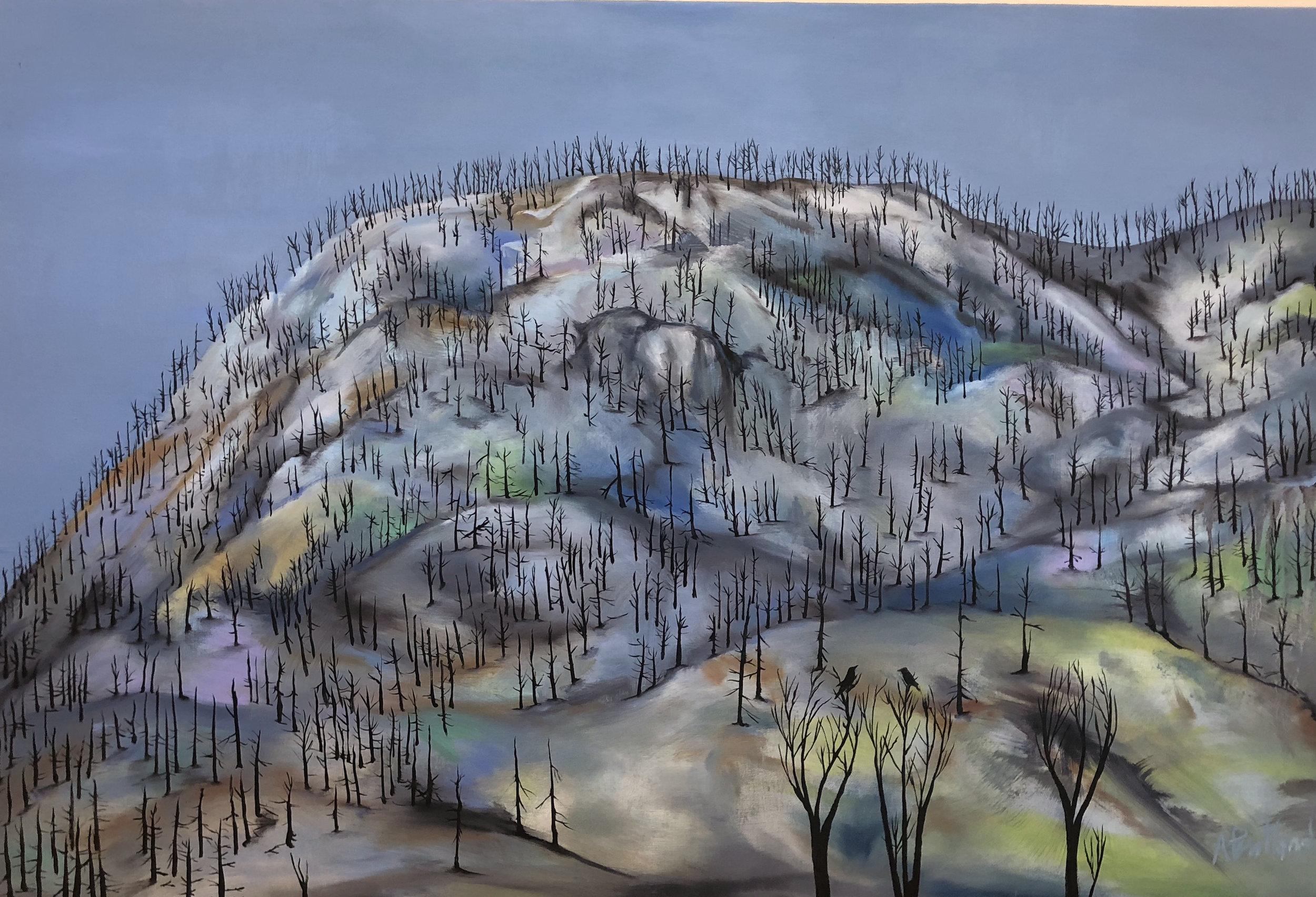 One Thousand Trees, Two Birds, One Ridge