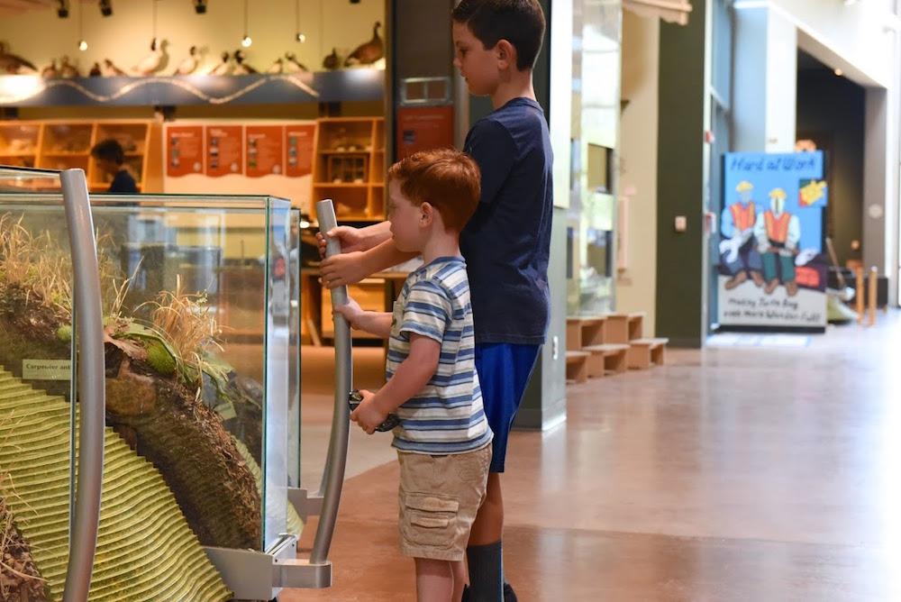Turtle Bay Museum Redding California.jpg