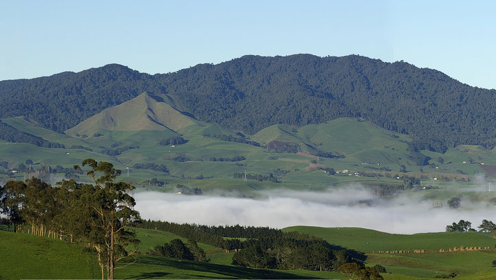 Maungatautari - Sanctuary Mountain is a conservation project which aims to continue the species re-introductions and breeding programmes to create bio-diversity in a sound ecological environment. 30 minute drive. More…