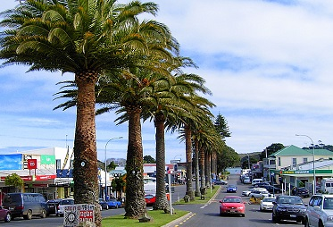 Raglan - Whether you're looking for world-class surf, stunning scenery, beautiful beaches, inspiring arts or simply a good old cup of coffee, Raglan has something for everyone. 45 minute drive. More…
