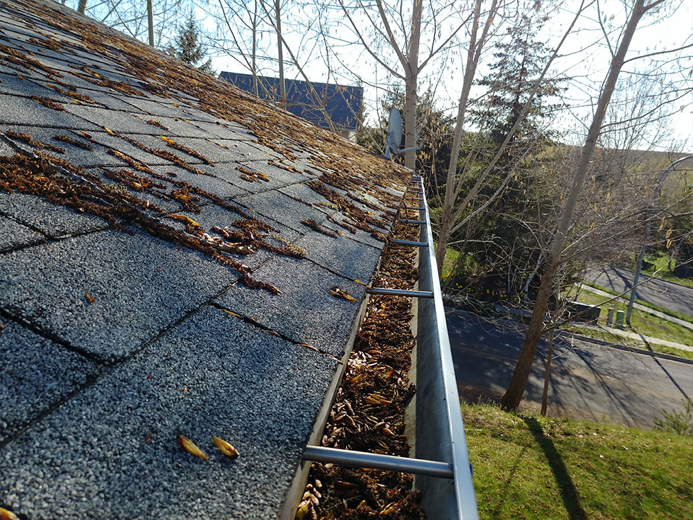 Above: Clogged gutters caused by leaves and moss can contribute to ice damming and gutter overflows.