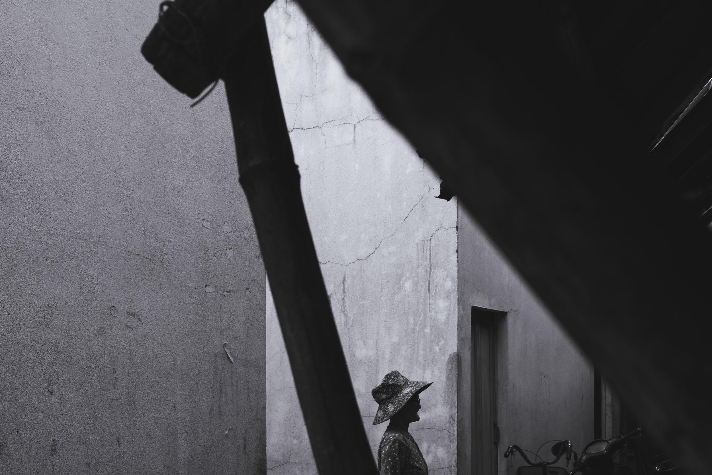 Vietnam-minimal-walker