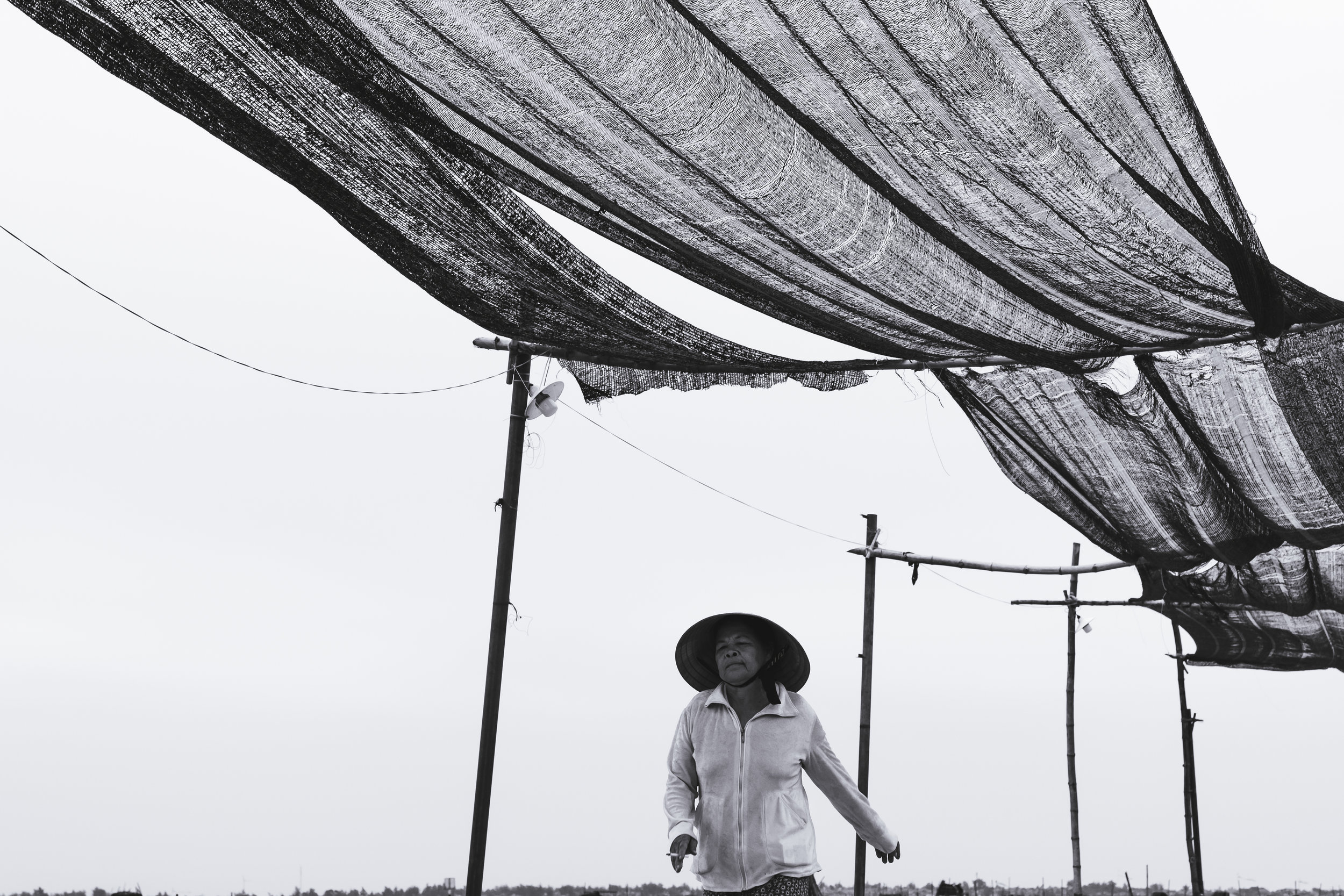 Vietnam walker