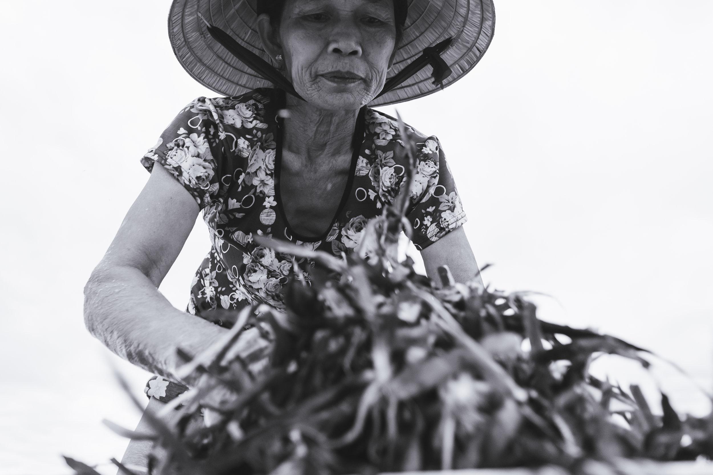 Vietnam-lady-working