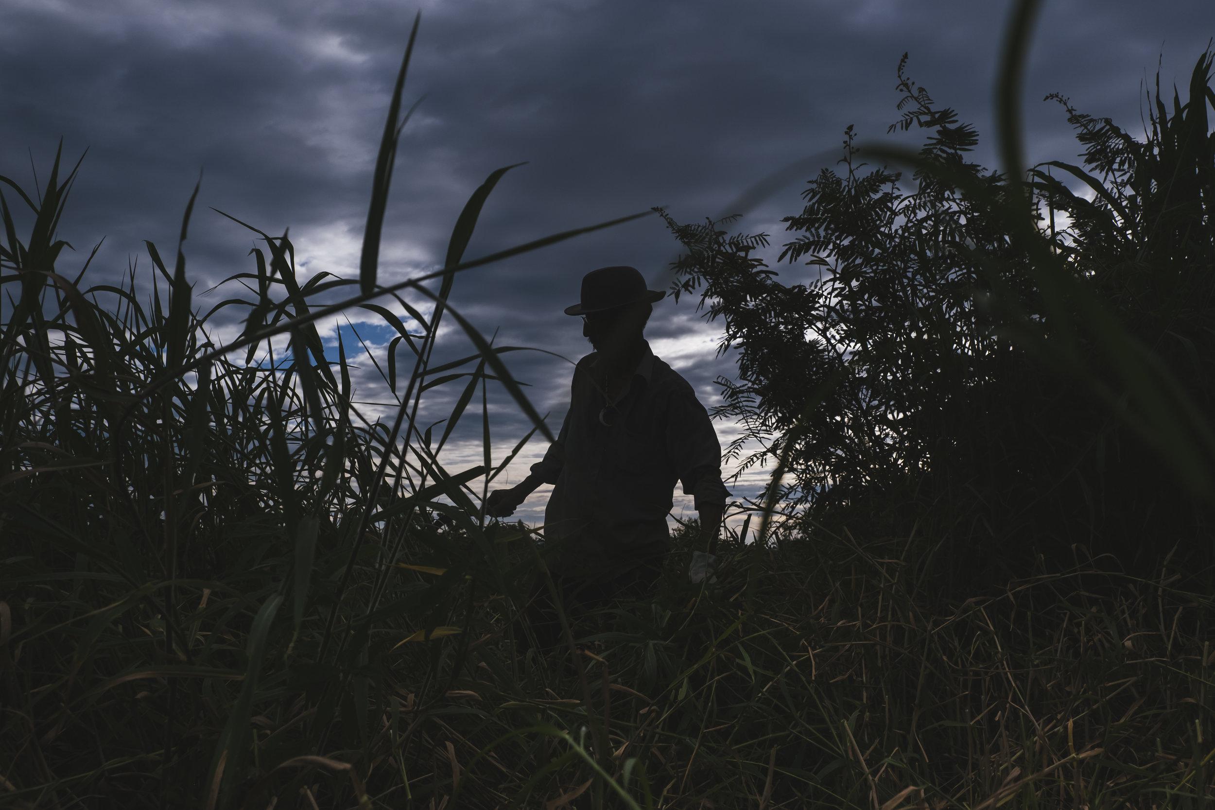 Man-in-field