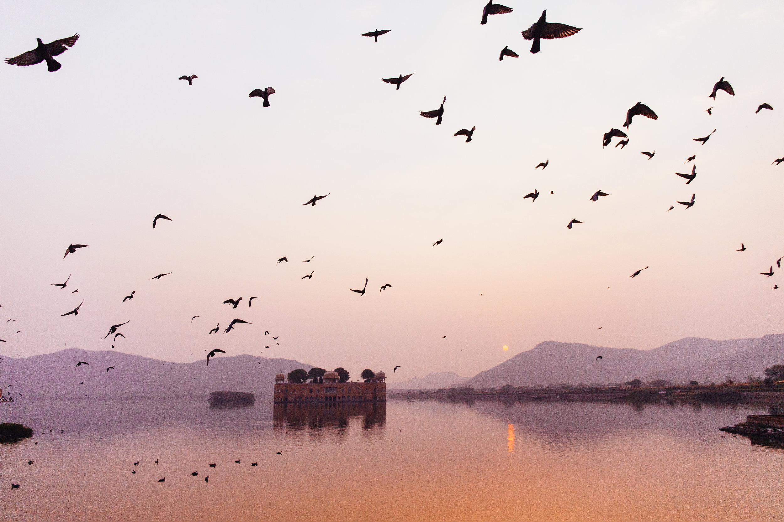 Jaipur-Mellor