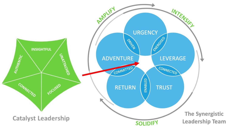 Cat and Syn Leadership Model.jpg