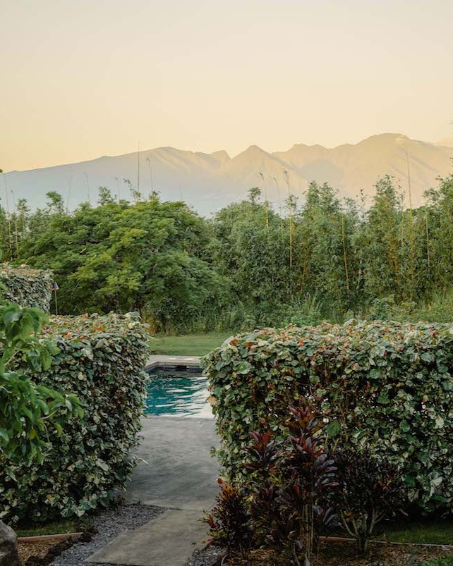 Retreat Marketing - This wellness retreat in Upcountry Maui features daily yoga, meditation and a holistic spa. Current projects include email marketing execution.