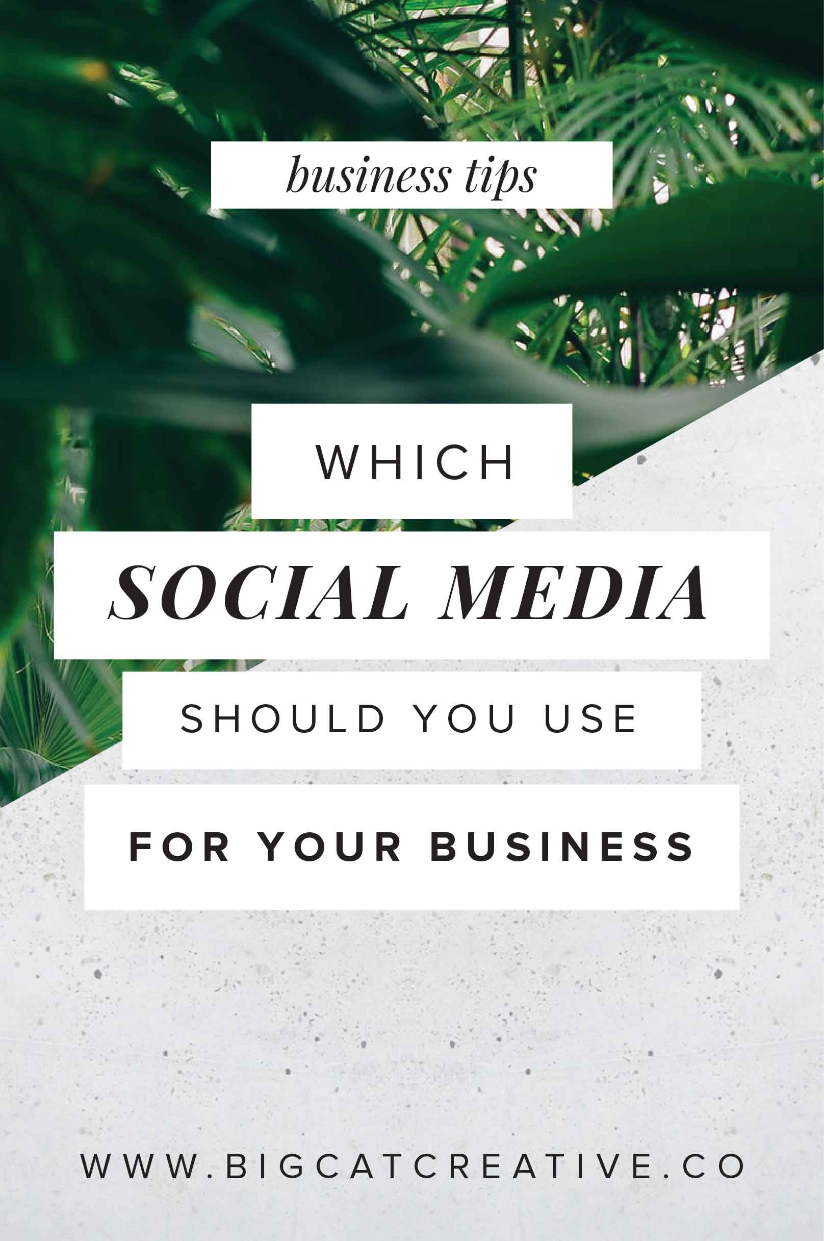 Which-Social-Media-should-I-use-for-my-Business.jpg