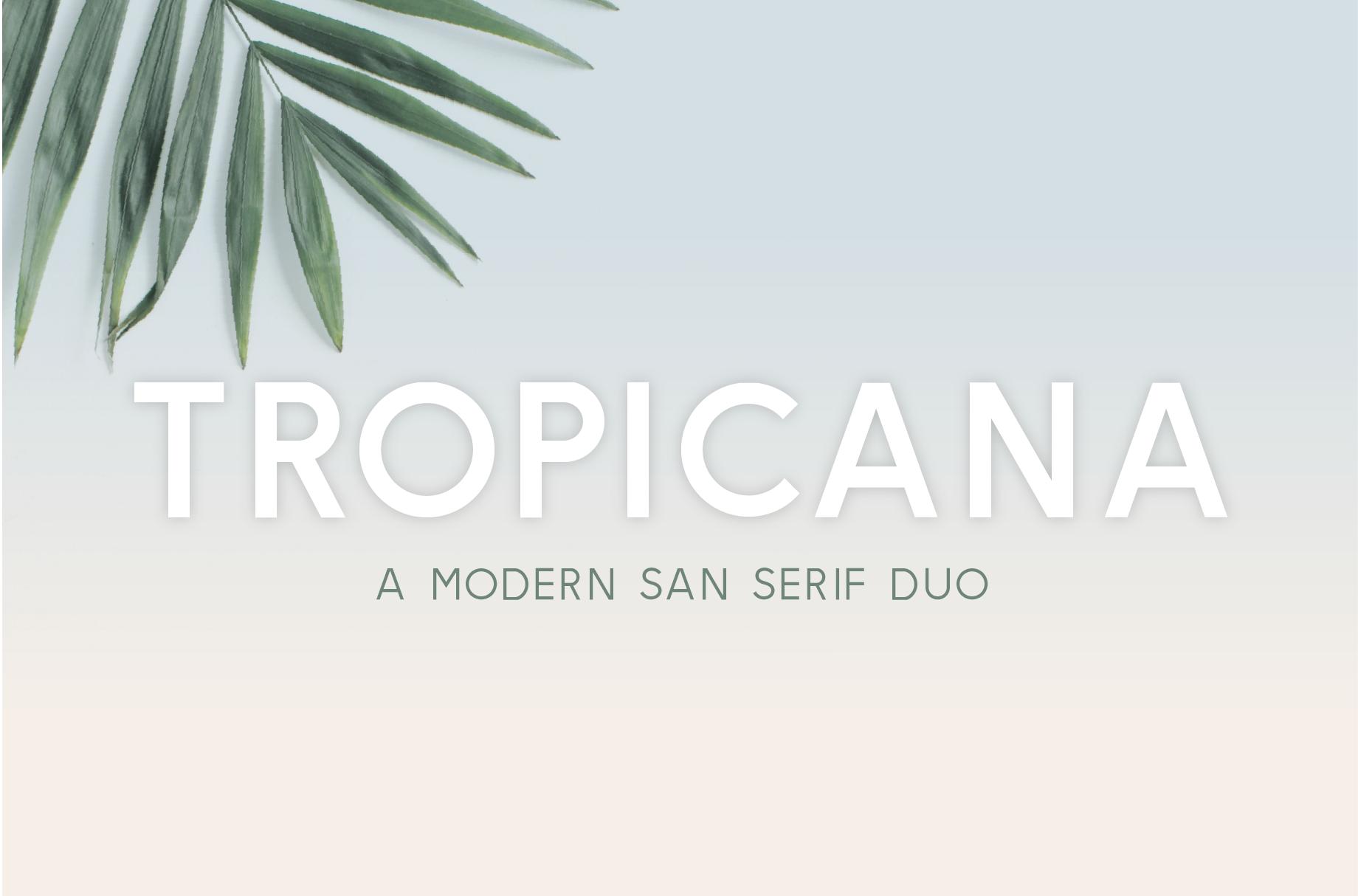 Tropicana Font by Big Cat Creative