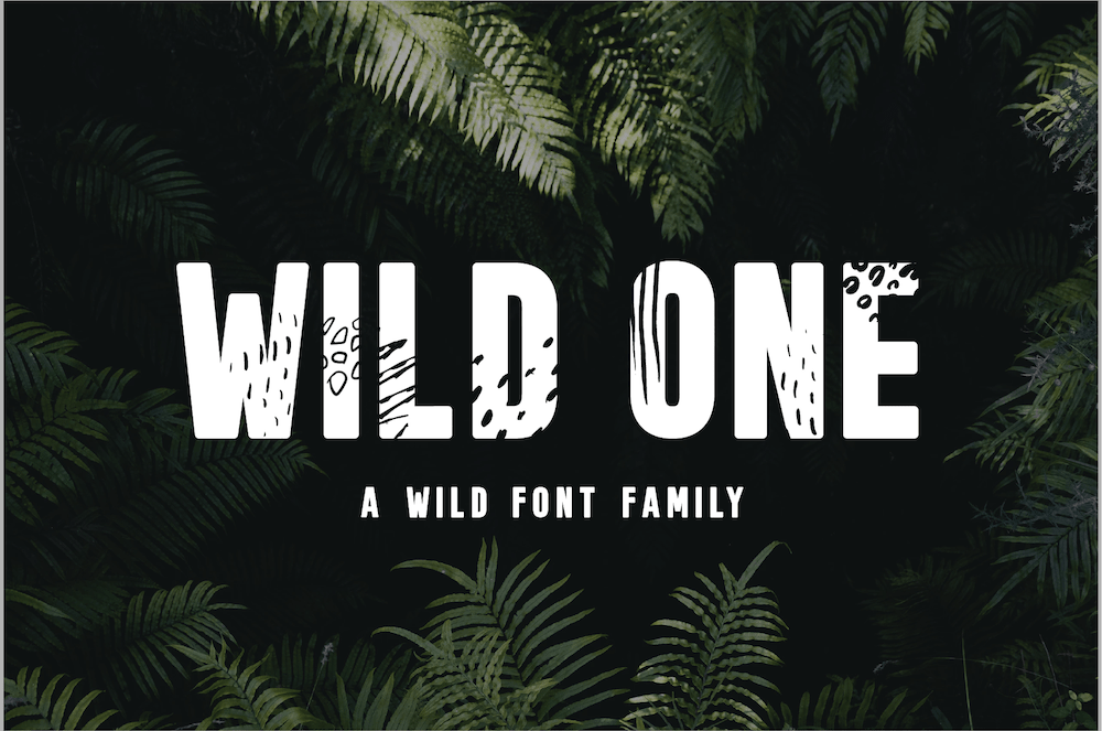 Wild One - Jungle Display Font Family by Big Cat Creative