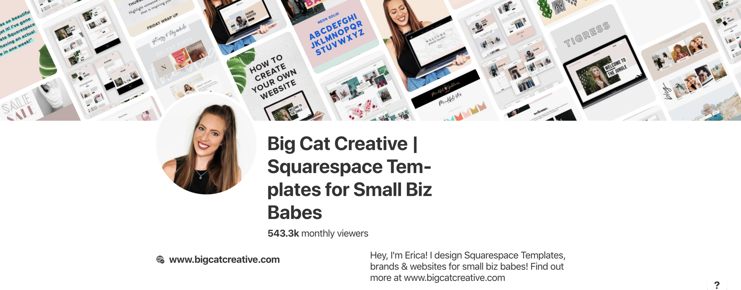 Pinterest For Business Strategy: how to increase your website traffic and land clients with Pinterest - By Big Cat Creative