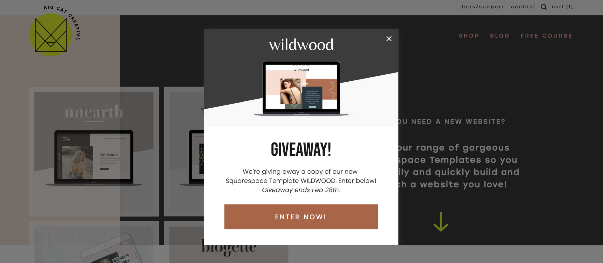 How to Add a Pop-Up in Squarespace - Big Cat Creative