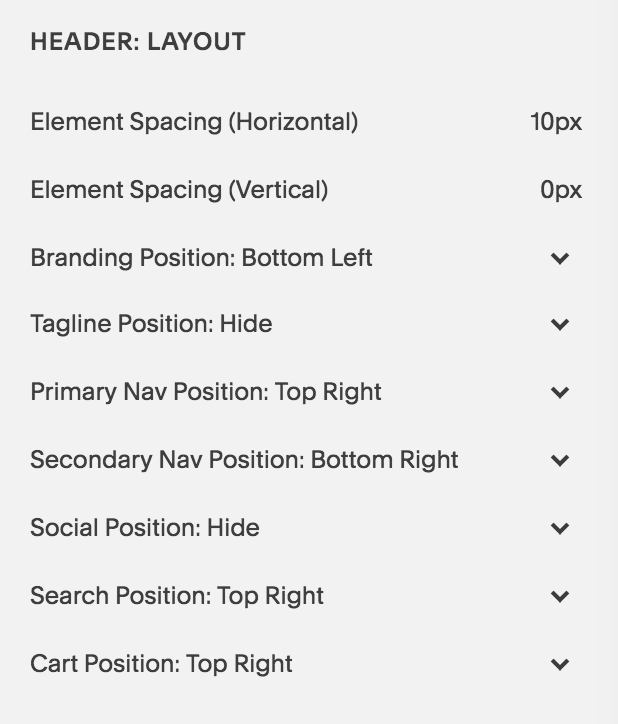 Brine is the Best Squarespace Template - An example of the advanced Manu Navigation Settings - Header Layout.png