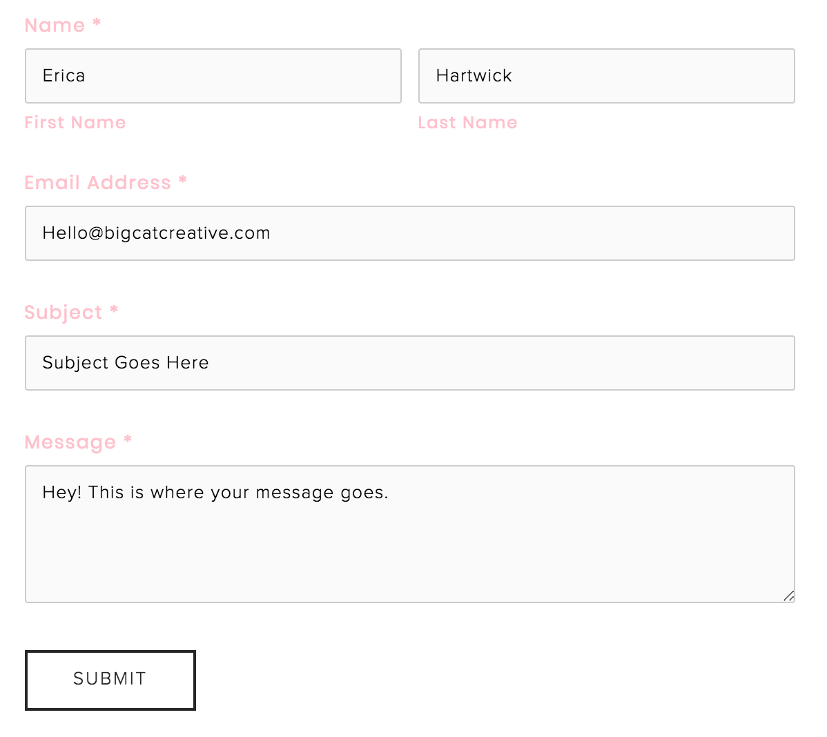 How to Customize Your Squarespace Contact Form copy + paste CSS code5.png