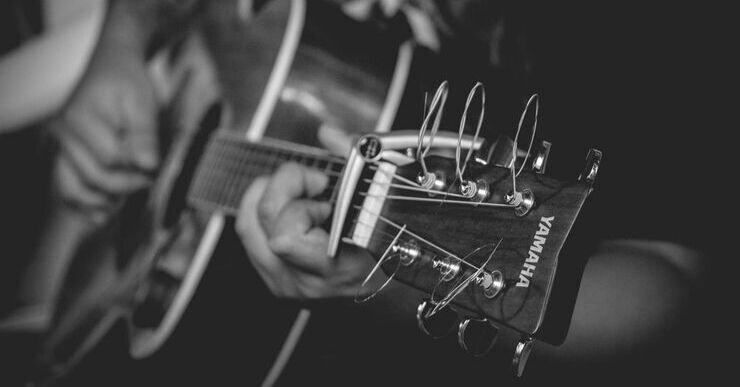 Good inventory control management led to this style of capo being the first choice for many guitar players. Thalia changed the game with their innovative product, and their inventory control techniques allowed them to keep going and prosper.