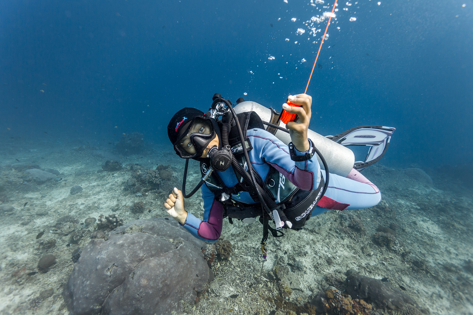 Have you taken a break from diving? - Get back in the water with Blue Corner