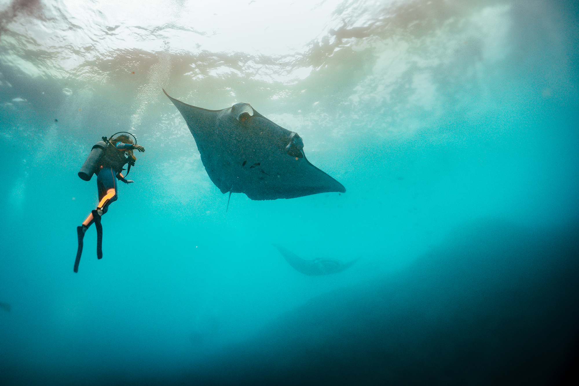 190416_MR-BCD-MANTA-POINT-GUIDING_DSC06382.png