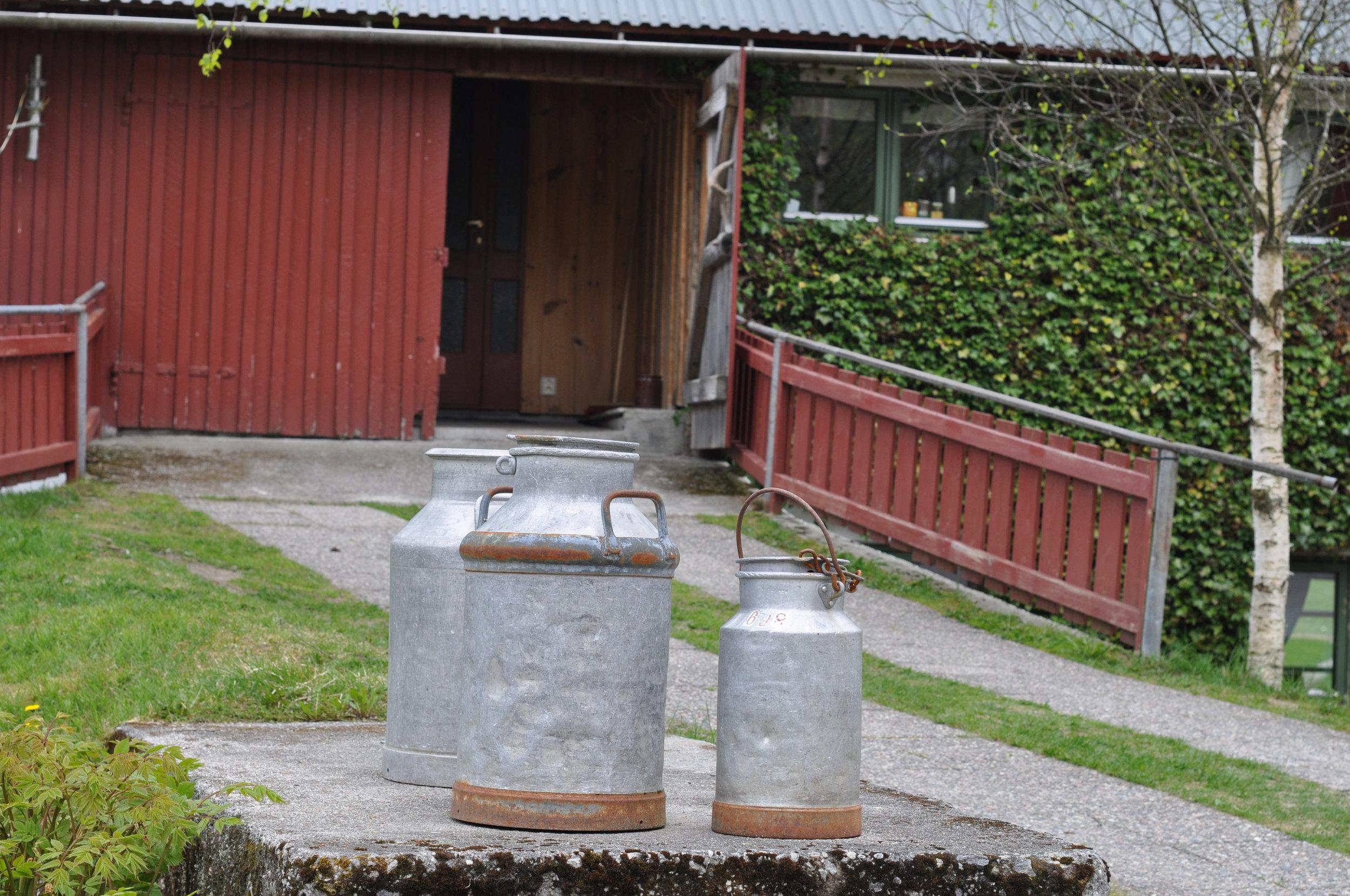 Grisehuset_1.JPG