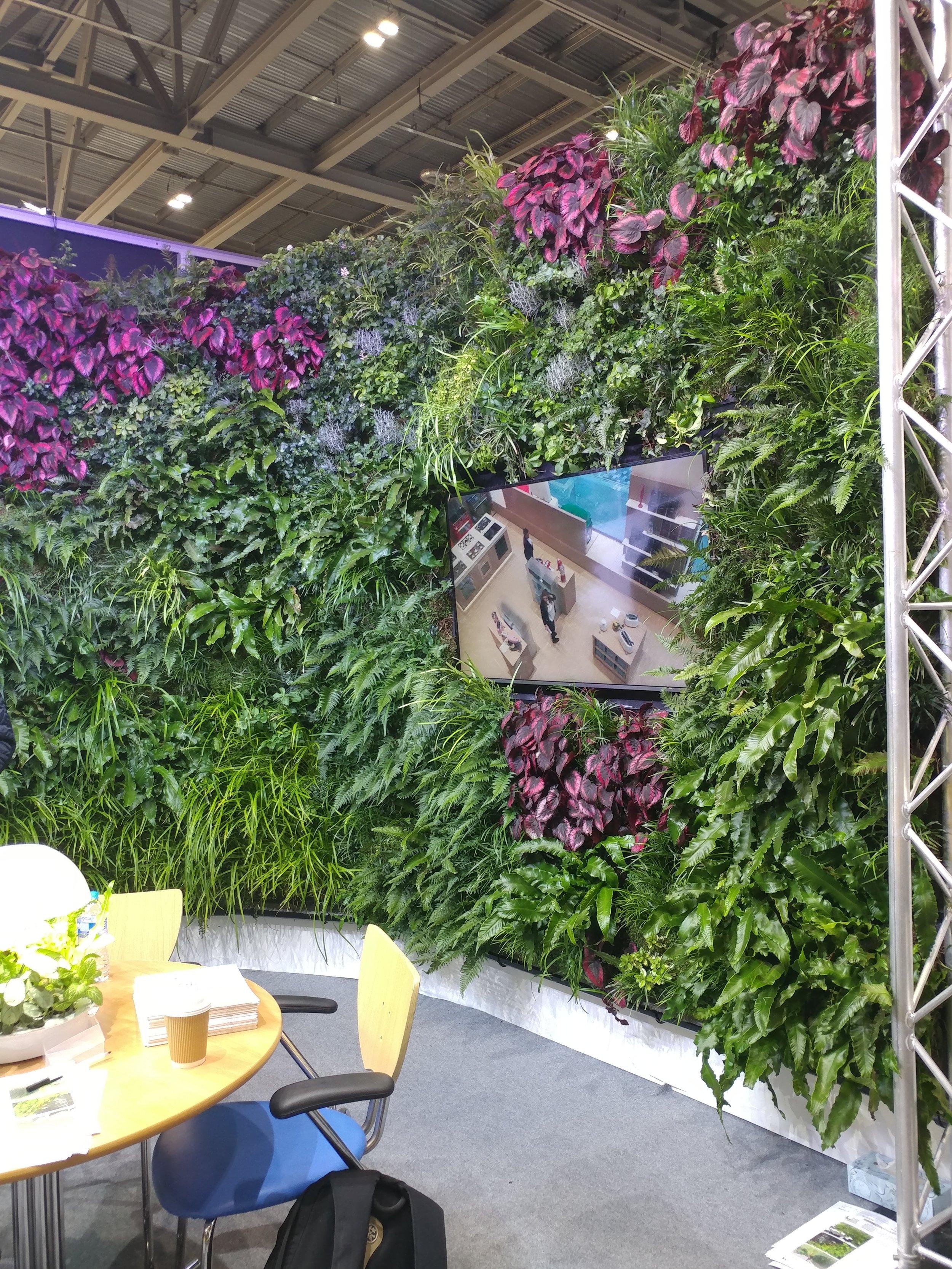 beautiful living wall installation at ecobuild 2018