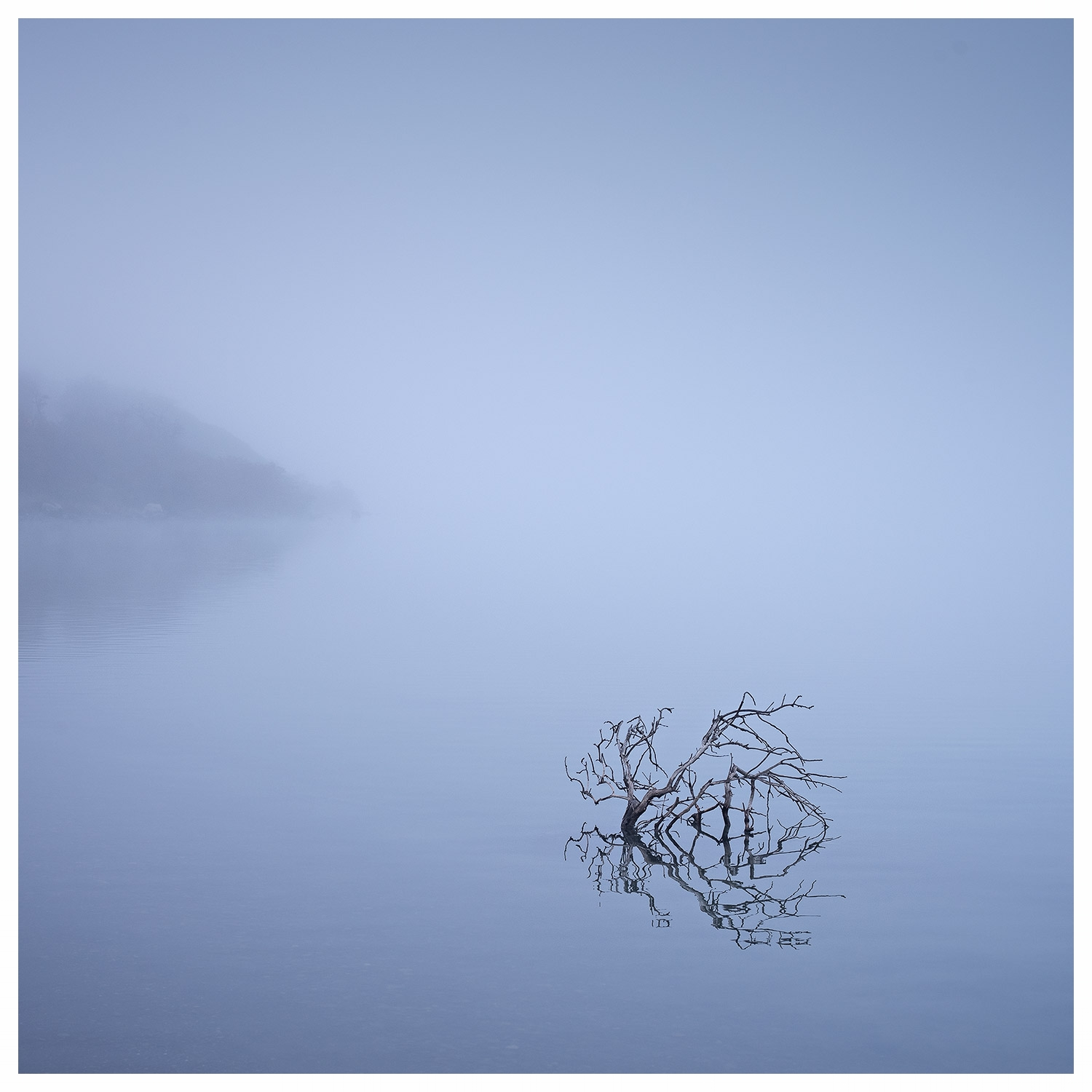 Lago Pahoe-Patagonia - This image was made just after midday. The weeping branch in the water has a soft feel about it and the soft light made by the fog complements the subject and works harmoniously with the whole image. Any other srt of light I think would not work leaving just a branch in a lake which by itself is not that interesting.