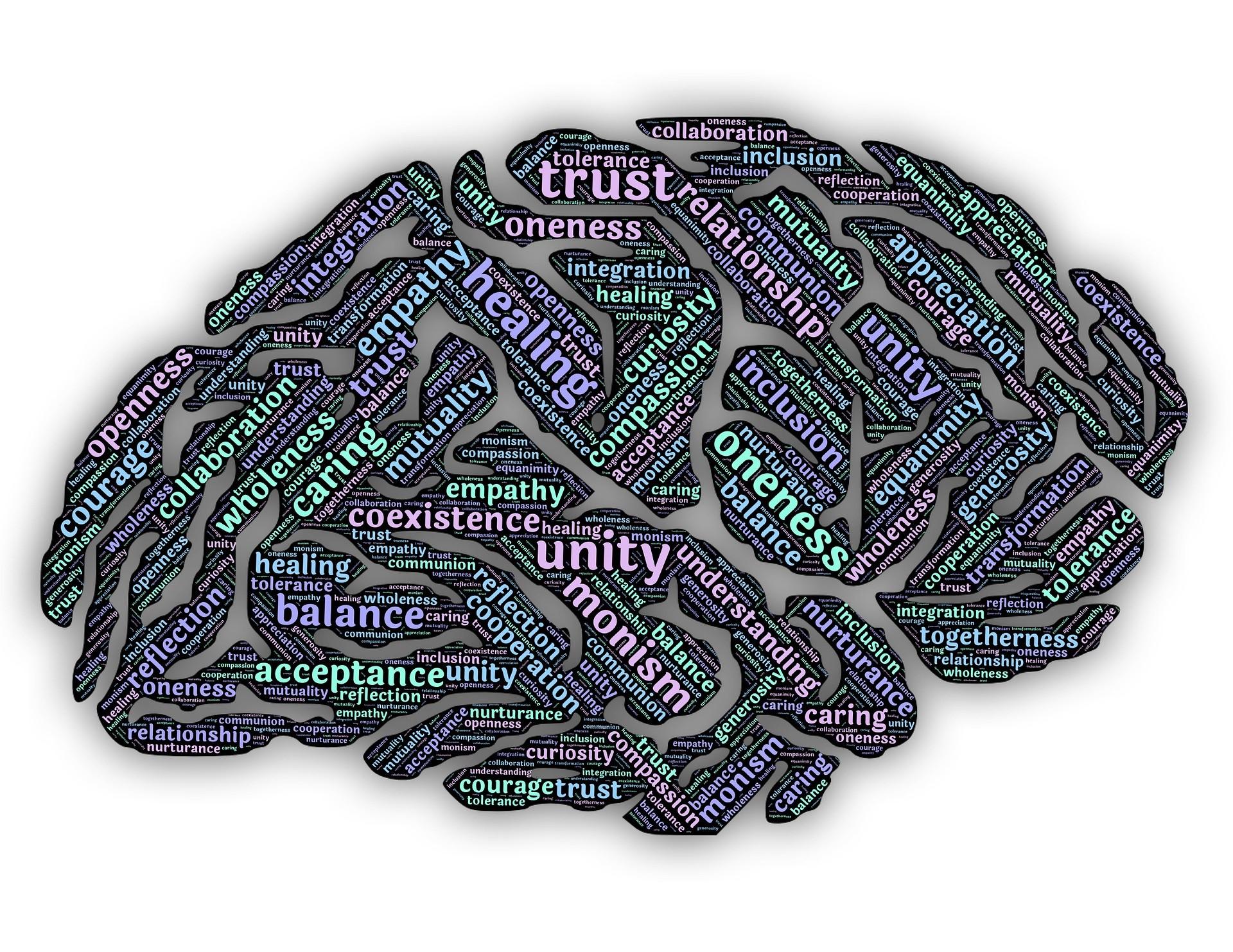 Mindfulness - brain.jpg
