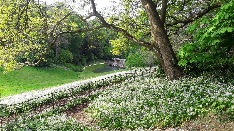 Pryor Park- viajar Inspira