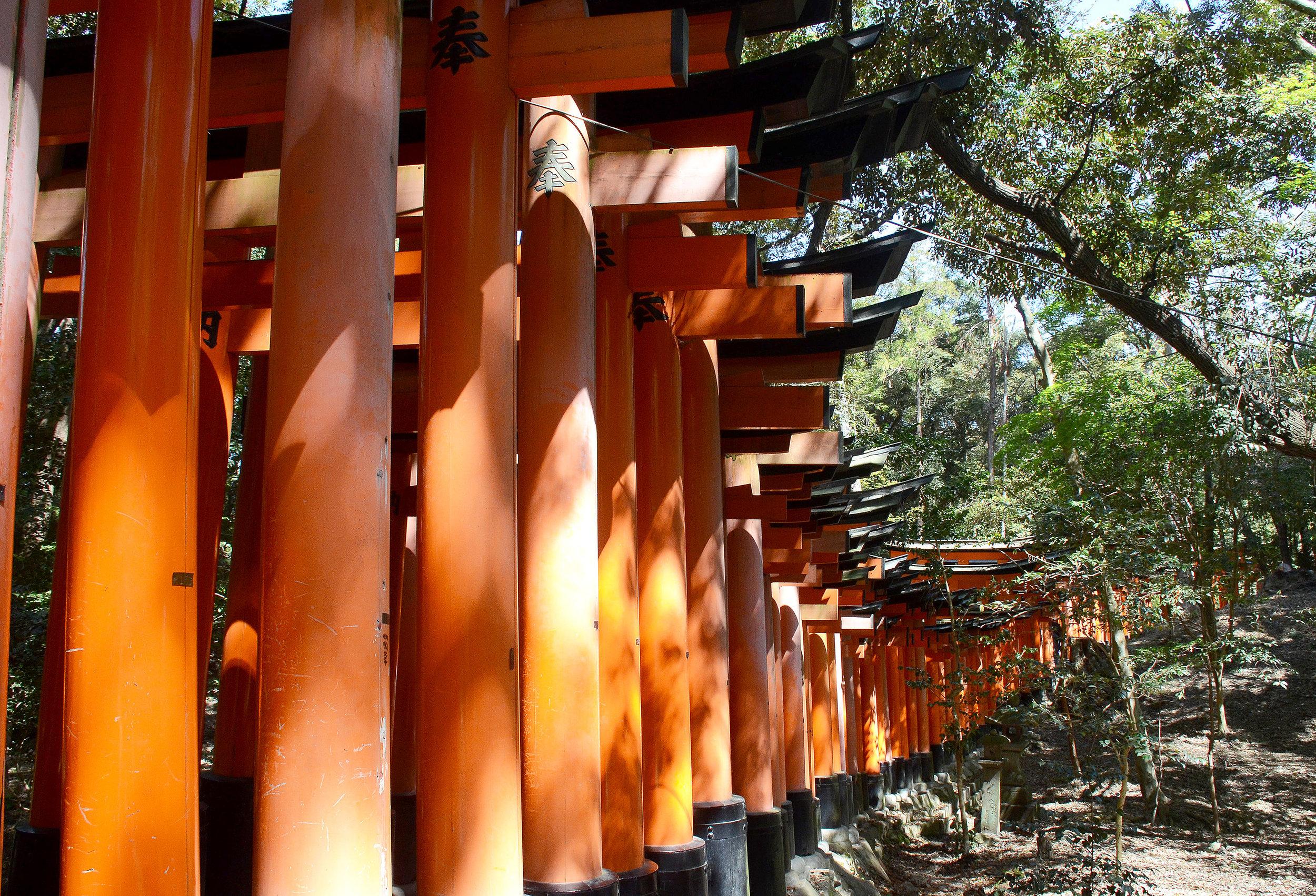Kioto 3 Viajar Inspira