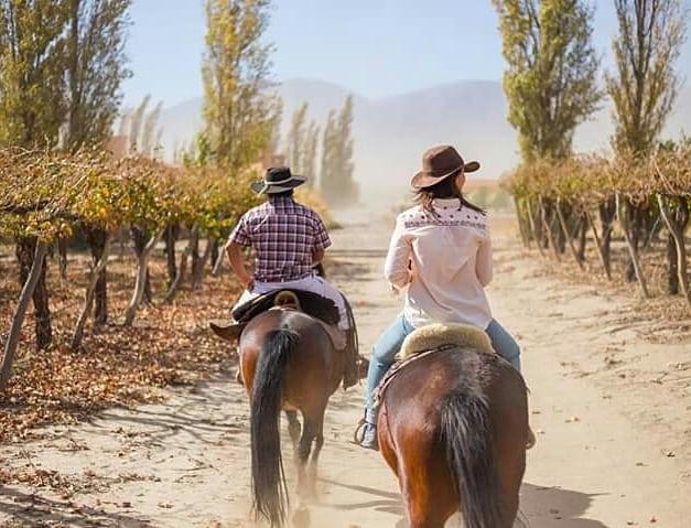 VIAJE AL NORTE ¿te imaginas en este paisaje degustando un exquisito vino y disfrutando del descanso? Nosotras sí! y por eso creamos este viaje para que sea realidad! Una semana recorriendo lo mas lindo del norte argentino y en Cafayate nos hospedaremos aquí, en el hotel @gracehotels #graceCafayate ¿queres ser parte de esta experiencia única diseñada junto a @veropalazzo ? . Toda la info completa del viaje en el link en bio! . No te quedes afuera  Ya tenemos reservas ! . #cafayate #wine #wineresort #gracehotels #salta #lifestyle #luxuryhotels #norteargentino #viajarinspira #miradadeviajarinspira