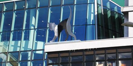 ArchMainImage_Whittingtonhospital01.jpg