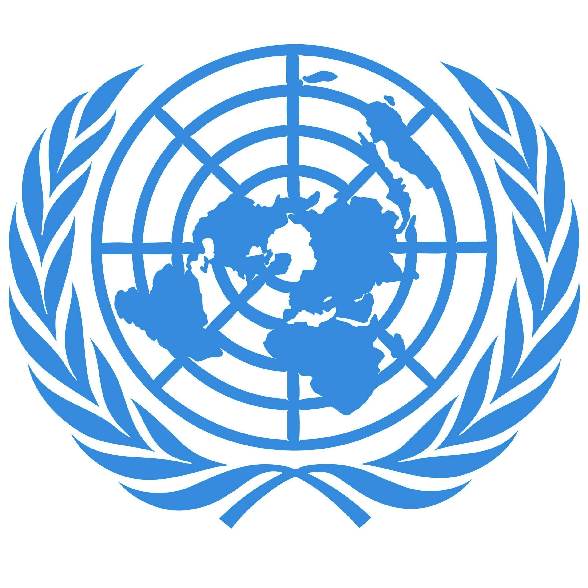 UN Security Council - Chair: Harry ShapiroCrisis Director: Daniel Vogler