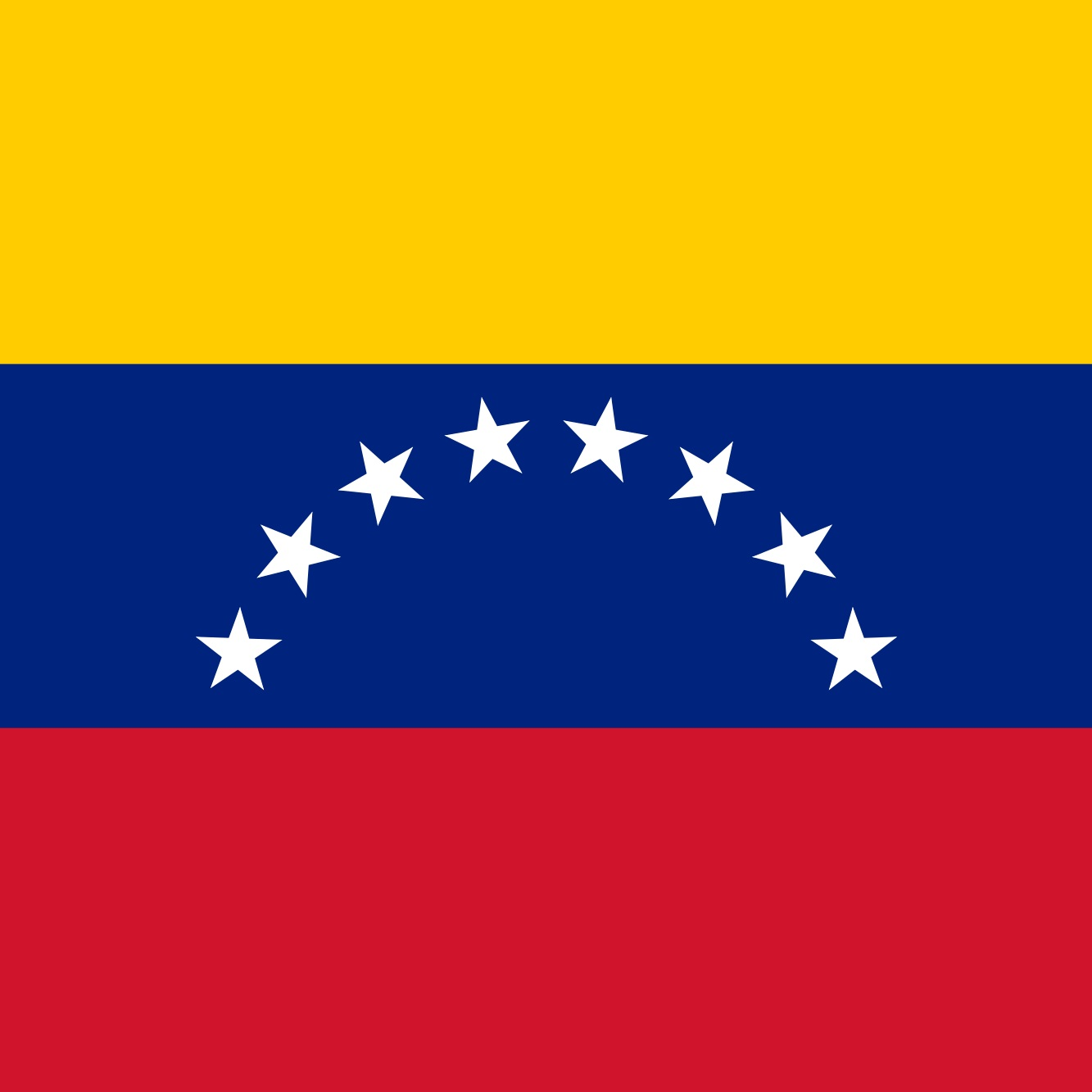 Venezuela 2020: Rebuilding a Nation - Chair: Bobo StankovikjCrisis Director: Olivia Ott