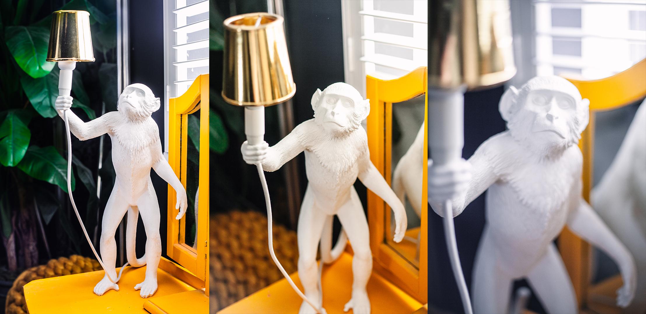 monkeywhite.jpg