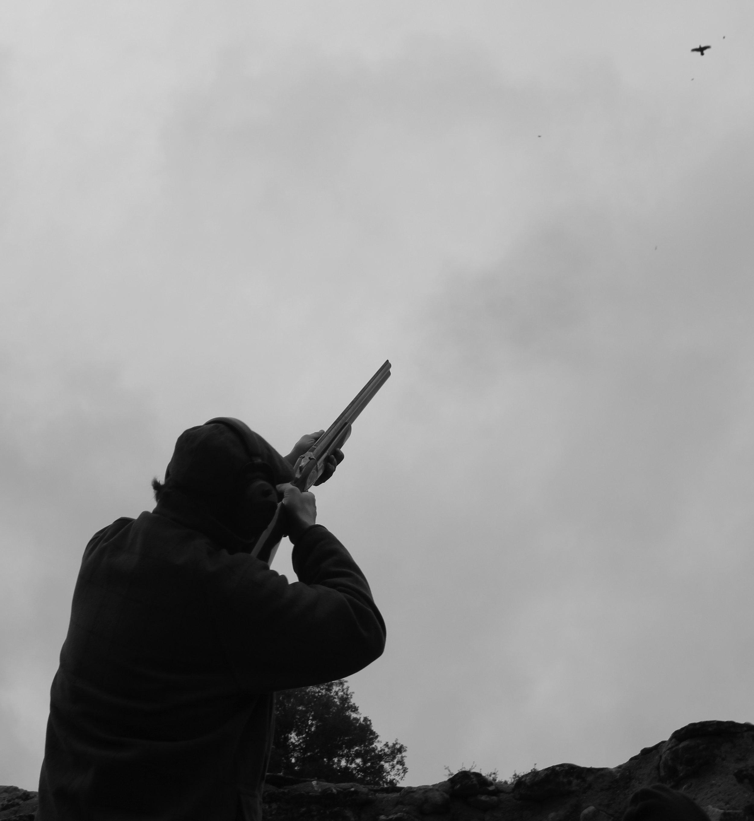 partridge-shooting-in-spain