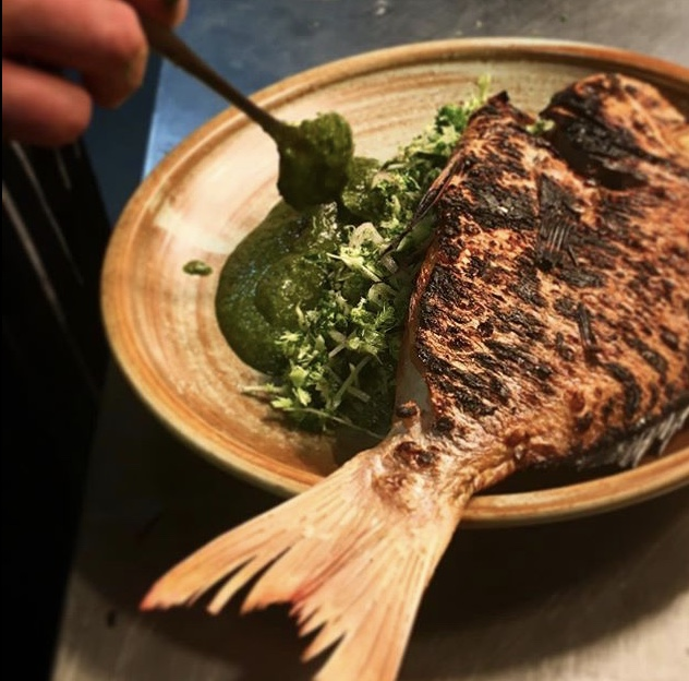 @tomo_taninaka  fish.PNG