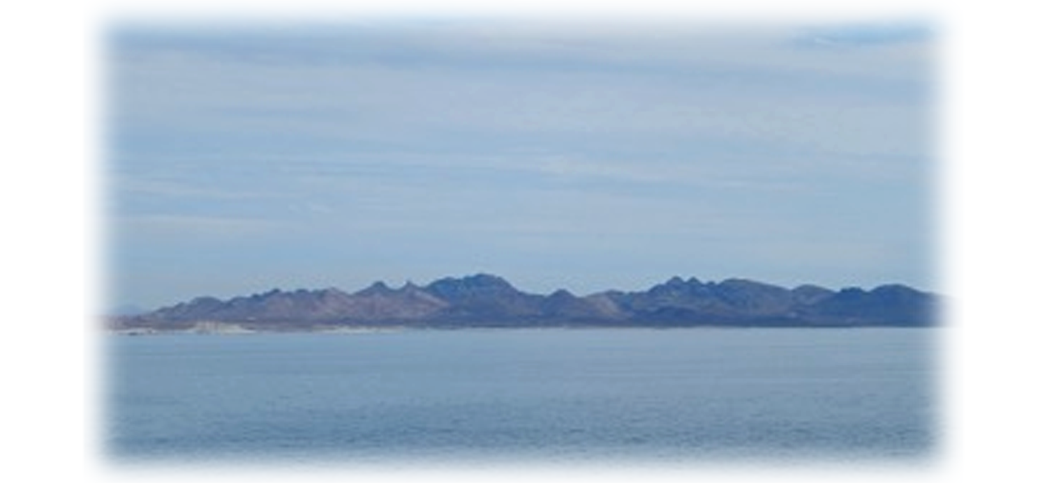 The Sea of Cortez - the Mexican Galapagos